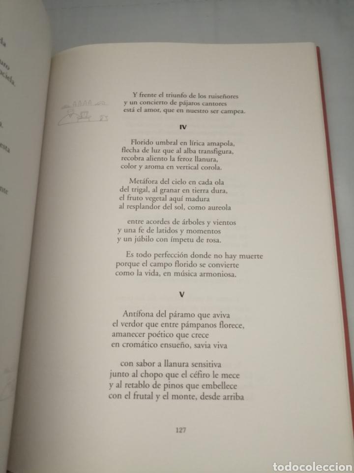 Libros de segunda mano: Los mayores cuentan: concursos de cuentos y poesía para las personas mayores, 1997-2001 - Foto 11 - 230347385