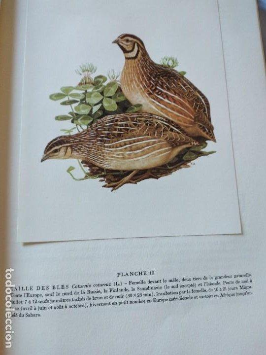Libros de segunda mano: Las aves reproductoras de Europa(Volumen 3). les oiseau nicheurs d´europe,paul géroudet,1967,frances - Foto 7 - 236298945