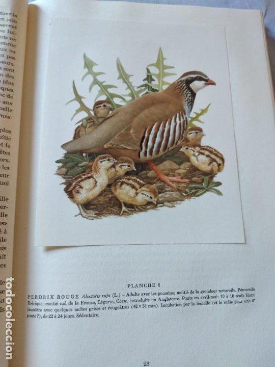 Libros de segunda mano: Las aves reproductoras de Europa(Volumen 3). les oiseau nicheurs d´europe,paul géroudet,1967,frances - Foto 8 - 236298945