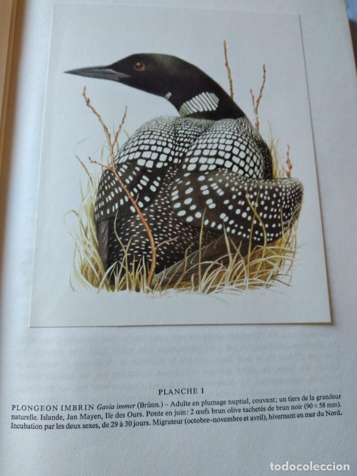 Libros de segunda mano: Las aves reproductoras de Europa(Volumen 4). les oiseau nicheurs d´europe,paul géroudet,1962,frances - Foto 6 - 236299050