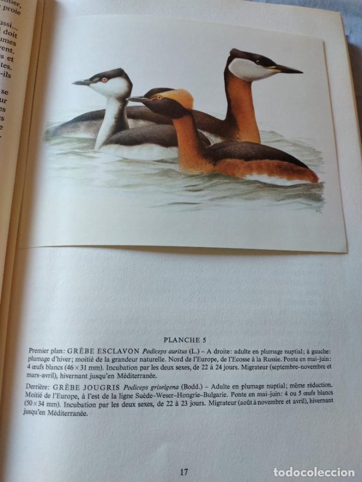 Libros de segunda mano: Las aves reproductoras de Europa(Volumen 4). les oiseau nicheurs d´europe,paul géroudet,1962,frances - Foto 7 - 236299050