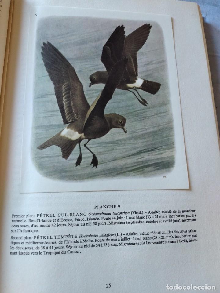 Libros de segunda mano: Las aves reproductoras de Europa(Volumen 4). les oiseau nicheurs d´europe,paul géroudet,1962,frances - Foto 8 - 236299050