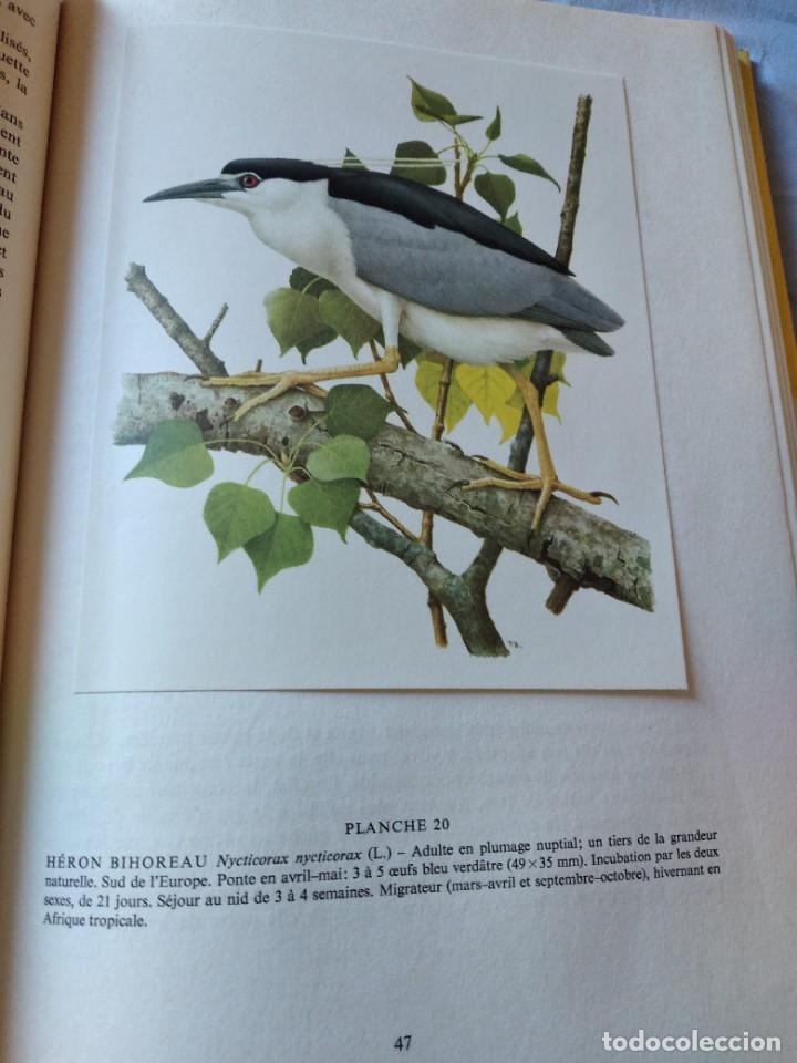 Libros de segunda mano: Las aves reproductoras de Europa(Volumen 4). les oiseau nicheurs d´europe,paul géroudet,1962,frances - Foto 9 - 236299050