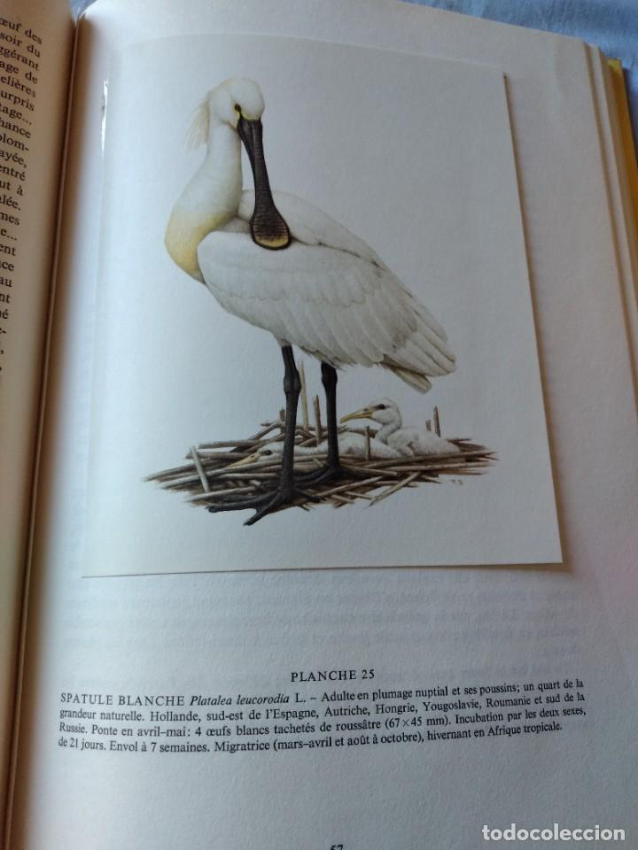 Libros de segunda mano: Las aves reproductoras de Europa(Volumen 4). les oiseau nicheurs d´europe,paul géroudet,1962,frances - Foto 10 - 236299050