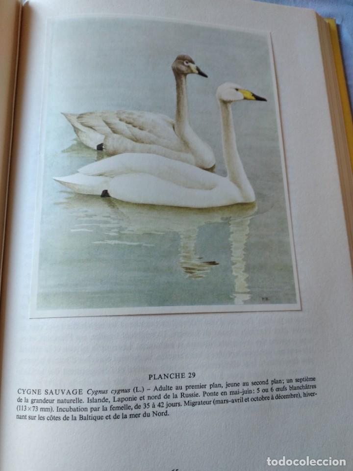 Libros de segunda mano: Las aves reproductoras de Europa(Volumen 4). les oiseau nicheurs d´europe,paul géroudet,1962,frances - Foto 11 - 236299050