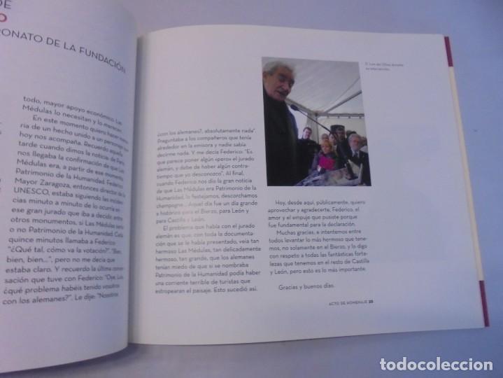 Libros de segunda mano: LAS MEDULAS. REAL ACADEMIA DE INGENIERIA. HOMENAJE A LAS MINAS DE ORO. 2 LIBROS. 2009 - Foto 19 - 236809130