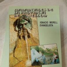 Libros de segunda mano: LIBRO MANANTIALES DE LA PROVINCIA DE CASTELLON. Lote 237891685