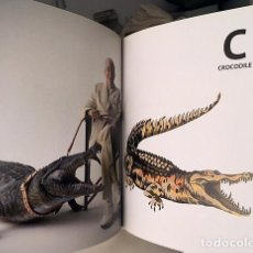 Livres d'occasion: LACOSTE. (NEW YORK. ASSOULINE PUBLISHING) 260 PAGS ILUSTRACIONES COLOR PLENA PAGINA. Lote 239833560