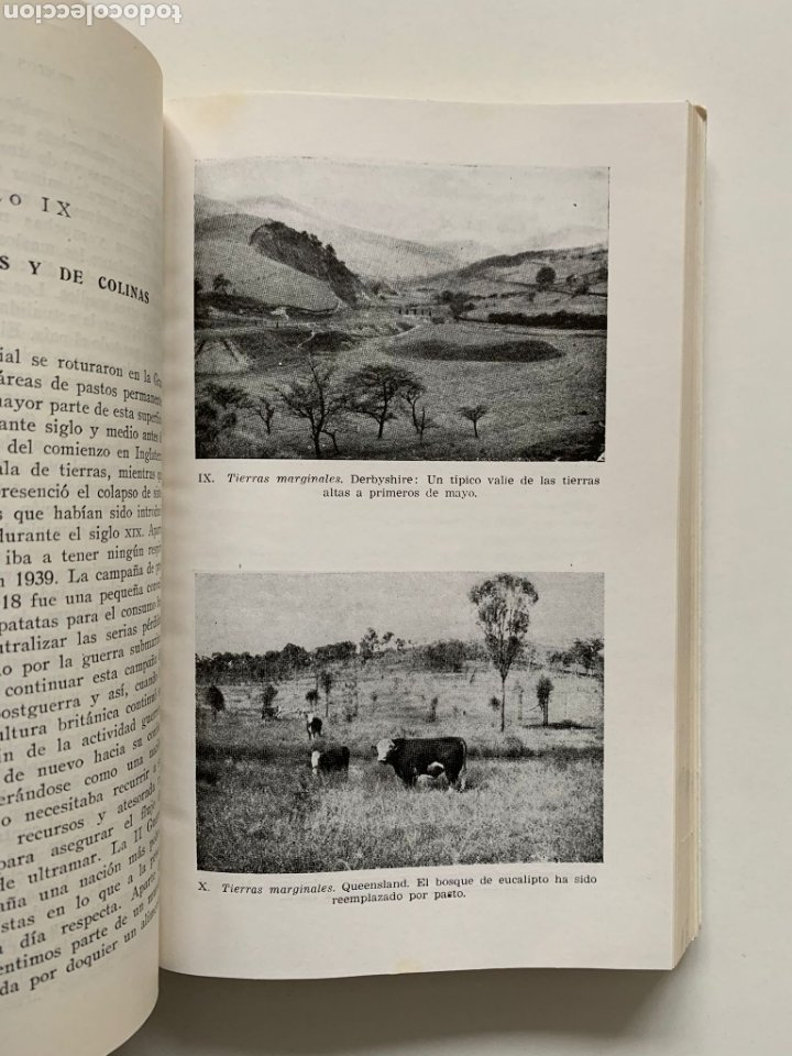 Libros de segunda mano: William Davies. Praticultura. Hierba. Ganadería. Alimentación del ganado. Forraje. Primera edición. - Foto 4 - 244507360