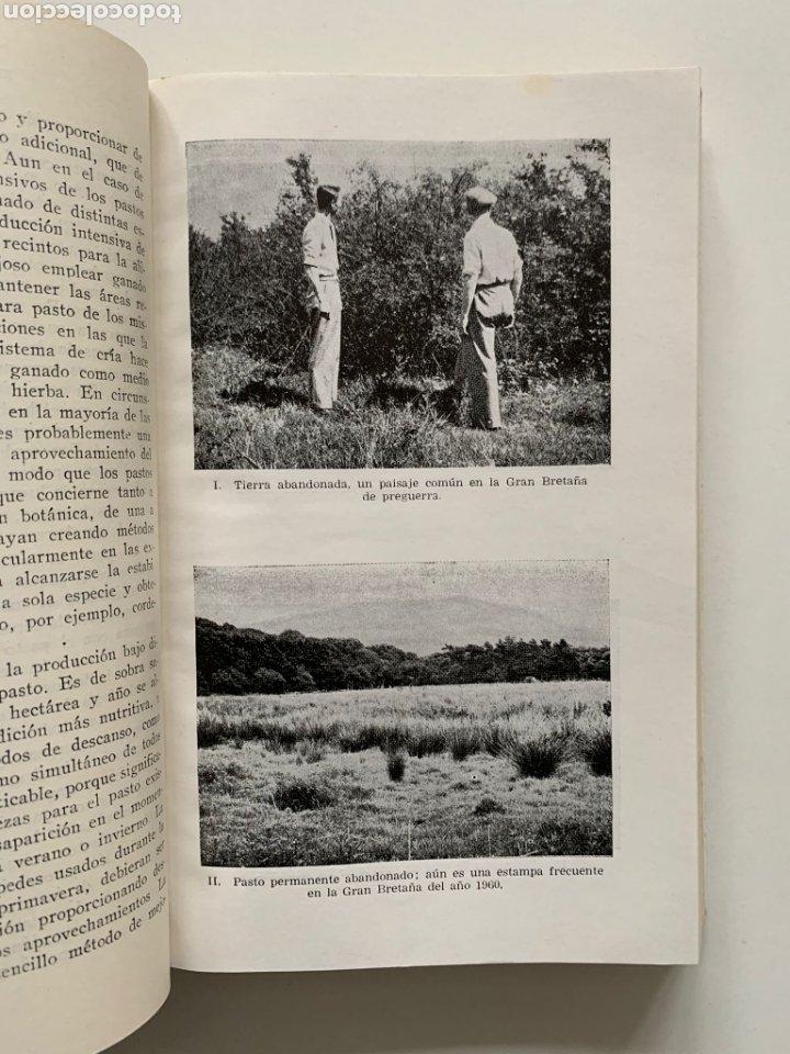 Libros de segunda mano: William Davies. Praticultura. Hierba. Ganadería. Alimentación del ganado. Forraje. Primera edición. - Foto 5 - 244507360