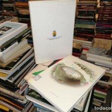 Libros de segunda mano: INVENTARI DEL PATRIMONI HIDRÀULIC DE LES PITIÜSES . TOM 2 .POUS I FONTS EIVISSA . SANT JOAN LABRITJA. Lote 244698580