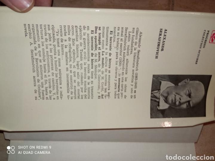 Libros de segunda mano: El Torrente de Hierro Alexandra Serafirmovich y El ejercito de Caballería Isaak Babel - Foto 2 - 253577600