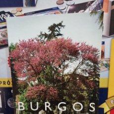 Libros de segunda mano: BURGOS CIUDAD DE PASEOS..SUS ARBOLES.... Lote 258151810