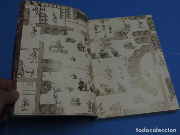 Libros de segunda mano: TEINTURES PRÉCIEUSES DE LA MÉDITERRANÉE. TINTES PRECIOSOS DEL MEDITERRÁNEO - Foto 2 - 261561195