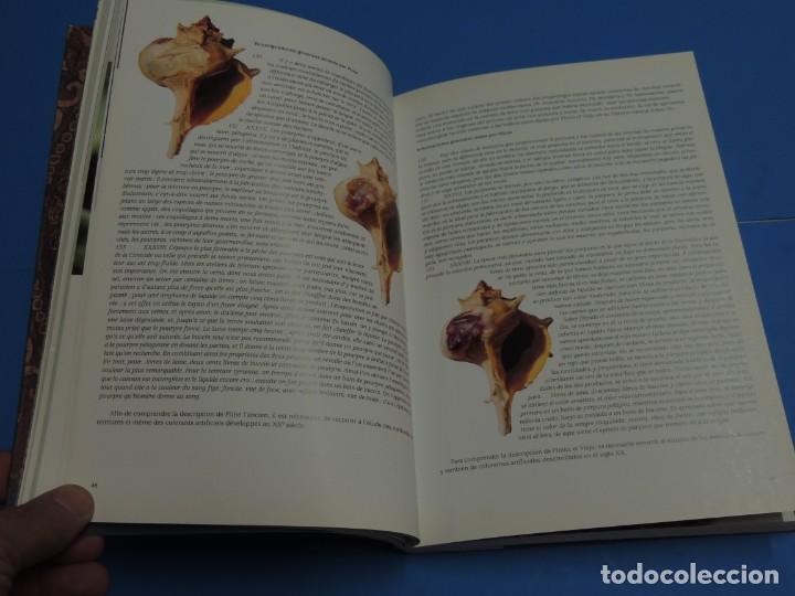 Libros de segunda mano: TEINTURES PRÉCIEUSES DE LA MÉDITERRANÉE. TINTES PRECIOSOS DEL MEDITERRÁNEO - Foto 10 - 261561195