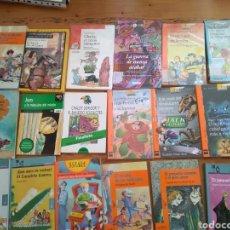 Libros de segunda mano: 105 LIBROS DE LITERATURA INFANTIL Y JUVENIL POR 100€. BARCO DE VAPOR, EDEBÉ TUCÁN, ALFAGUARA..... Lote 261587415