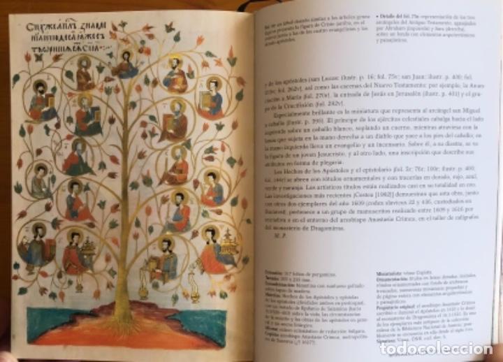 Libros de segunda mano: EL LIBRO DE LAS BIBLIAS- ILUMINADAS MAS BELLAS EDAD MEDIA- 2016 - Foto 12 - 268026469