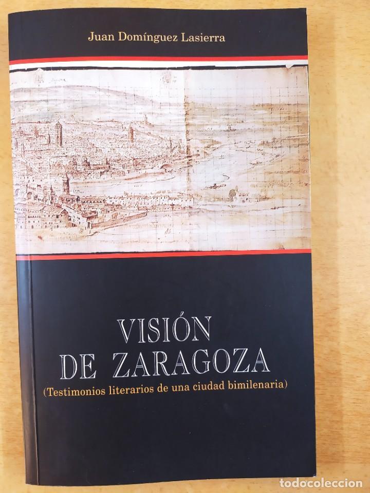 VISIÓN DE ZARAGOZA / JUAN DOMINGUEZ LASIERRA / 2003. GOBIERNO DE ARAGÓN (Libros de Segunda Mano - Historia - Otros)