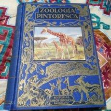 Libros de segunda mano: ZOOLOGÍA PINTORESCA EDITORIAL RAMÓN SOPENA. S.A.BARCELONA. Lote 270186358