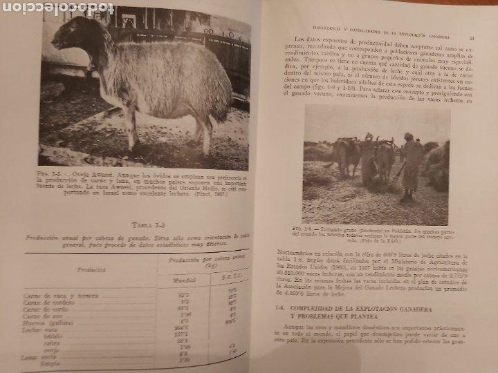 Libros de segunda mano: PRODUCCIÓN ANIMAL. HH . COLE. LIBRO DE GANADERÍA. ED ACRIBIA 1964 ZARAGOZA. - Foto 11 - 271353563