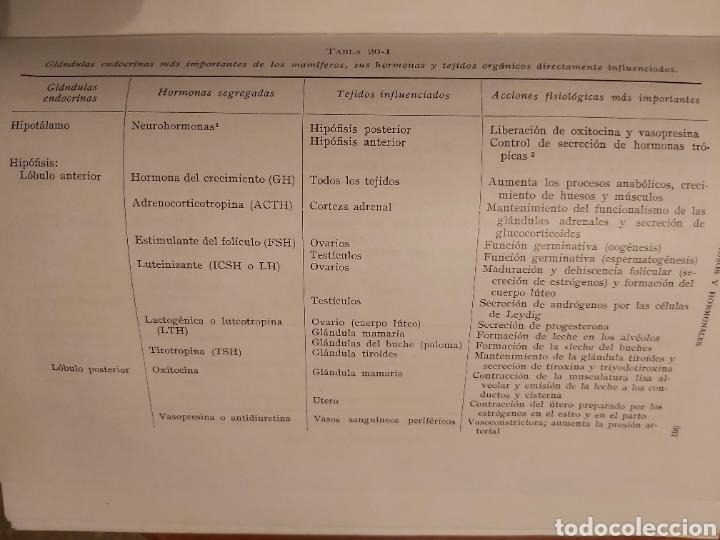 Libros de segunda mano: PRODUCCIÓN ANIMAL. HH . COLE. LIBRO DE GANADERÍA. ED ACRIBIA 1964 ZARAGOZA. - Foto 14 - 271353563