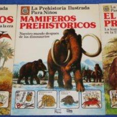 Libros de segunda mano: LA PREHISTORIA ILUSTRADA PARA NIÑOS - PLESA - EDICIONES SM. Lote 271508618