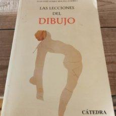 Libros de segunda mano: LAS LECCIONES DEL DIBUJO POR JUAN JOSE GOMEZ MOLINA EDT. CATEDRA AGOTADO MUY ILUSTRADO. Lote 272572403