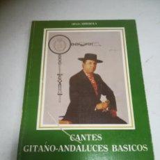 Libros de segunda mano: CANTES GITANO-ANDALUCES BÁSICOS. ALFREDO ARREBOLA. 1987. UNIVERSIDAD DE CADIZ.156 PÁGINAS. Lote 272869108