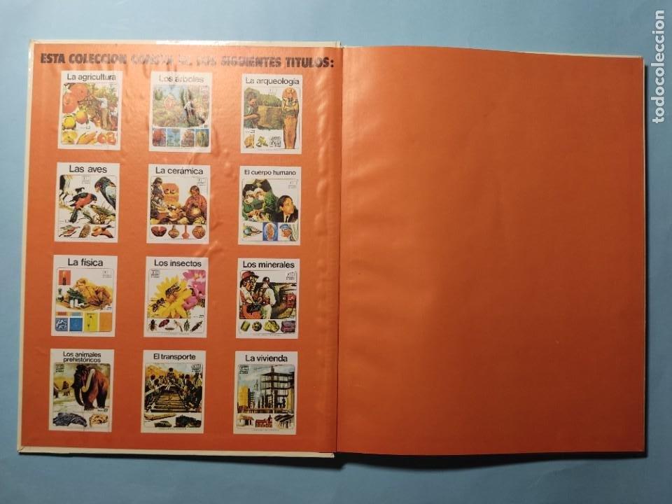 Libros de segunda mano: EL CUERPO HUMANO • EL HOMBRE Y SU ENTORNO • ENCICLOPEDIA TEMÁTICA Nº 6 • Ediciones AFHA 1977 - Foto 2 - 274833643