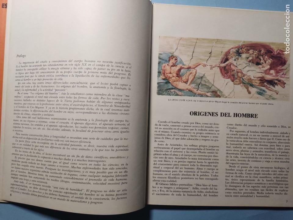 Libros de segunda mano: EL CUERPO HUMANO • EL HOMBRE Y SU ENTORNO • ENCICLOPEDIA TEMÁTICA Nº 6 • Ediciones AFHA 1977 - Foto 4 - 274833643