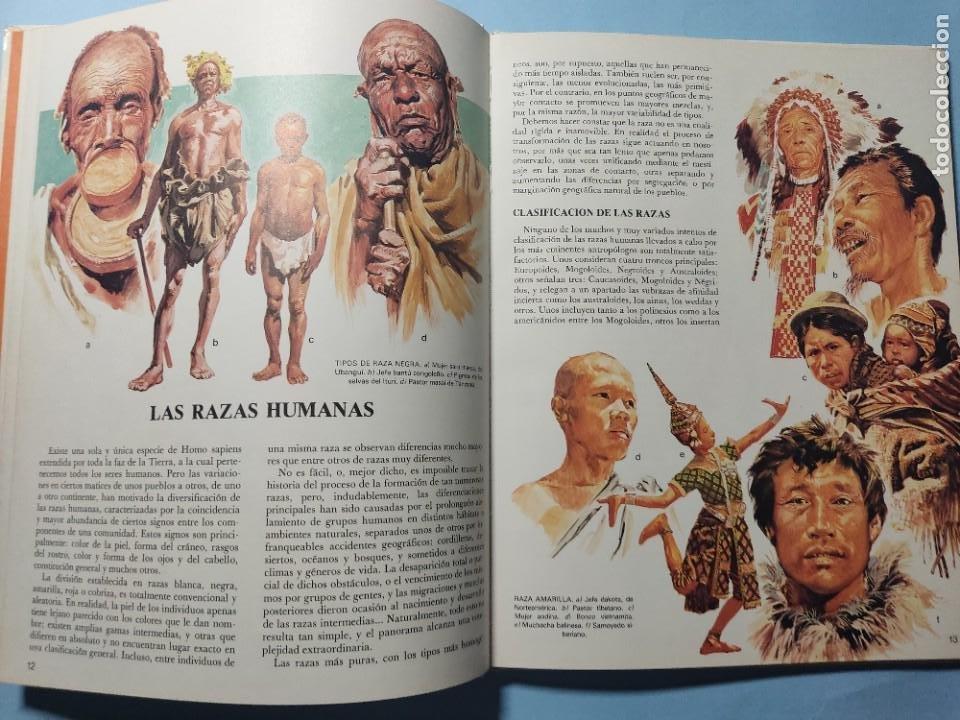 Libros de segunda mano: EL CUERPO HUMANO • EL HOMBRE Y SU ENTORNO • ENCICLOPEDIA TEMÁTICA Nº 6 • Ediciones AFHA 1977 - Foto 5 - 274833643