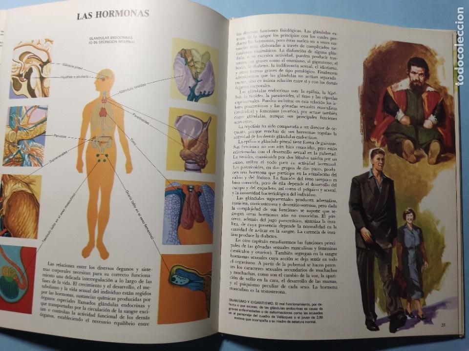 Libros de segunda mano: EL CUERPO HUMANO • EL HOMBRE Y SU ENTORNO • ENCICLOPEDIA TEMÁTICA Nº 6 • Ediciones AFHA 1977 - Foto 7 - 274833643