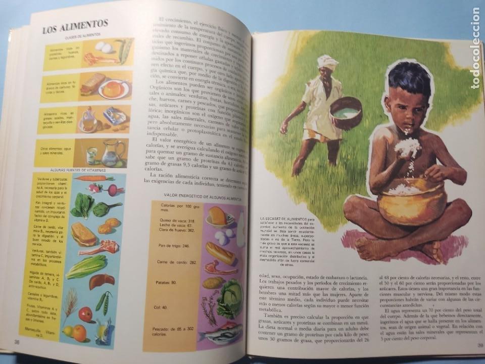 Libros de segunda mano: EL CUERPO HUMANO • EL HOMBRE Y SU ENTORNO • ENCICLOPEDIA TEMÁTICA Nº 6 • Ediciones AFHA 1977 - Foto 8 - 274833643