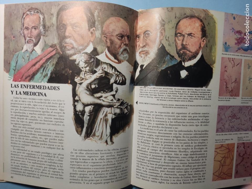 Libros de segunda mano: EL CUERPO HUMANO • EL HOMBRE Y SU ENTORNO • ENCICLOPEDIA TEMÁTICA Nº 6 • Ediciones AFHA 1977 - Foto 9 - 274833643