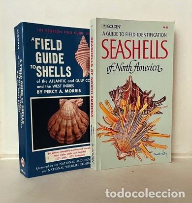 Libros de segunda mano: 2 Guías de Conchas : 1.- A Field Guide to Shells of the Atlantic… 2.- A Guide to Field Identificatio - Foto 2 - 275256508