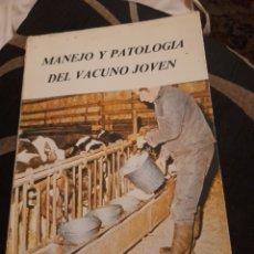 Libros de segunda mano: MANEJO Y PATOLOGÍA DEL VACUNO JOVEN. Lote 277657403