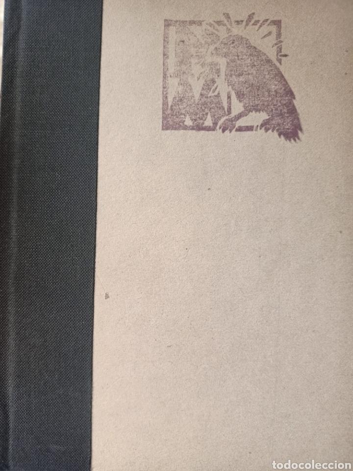 EL CUERVO DIJO NEVER MORE, XAVI CAPMANY I CARLOS DIAZ, RELATO / STORY, 1992 (Libros de Segunda Mano (posteriores a 1936) - Literatura - Otros)
