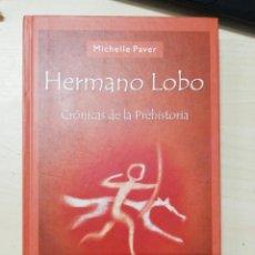 Libros de segunda mano: HERMANO LOBO, CRÓNICAS DE LA PREHISTORIA (MICHELLE PAVER) ED. SALAMANDRA . 1ª ED. 2005. Lote 279457833