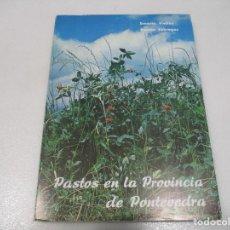 Libros de segunda mano: ERNESTO VIEITEZ, RAMÓN FÁBREGAS PASTOS EN LA PROVINCIA DE PONTEVEDRA W8494. Lote 279522608