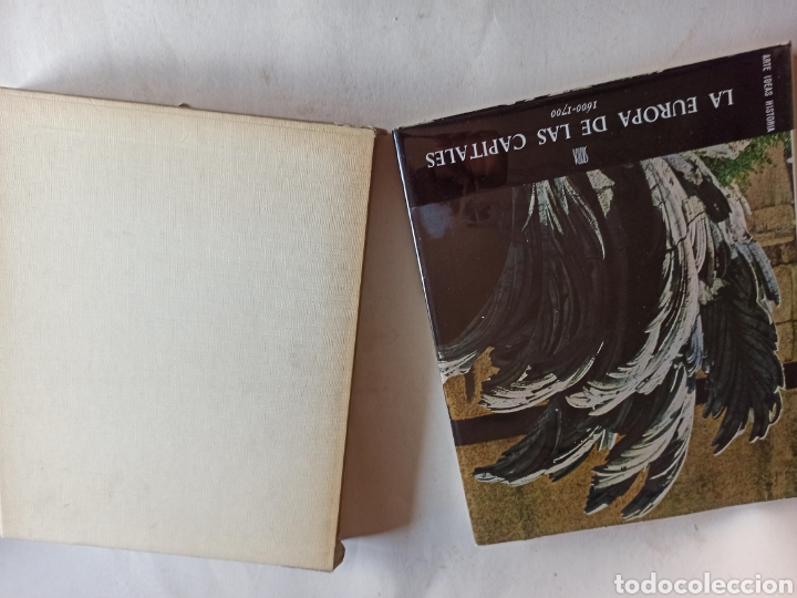 Libros de segunda mano: COLECCIÓN 10 VOLS. ARTE IDEAS HISTORIA 980-1945 (ALBERT SKIRA/CARROGGIO. GEORGE DUBY, CHASTEL... - Foto 19 - 287647923