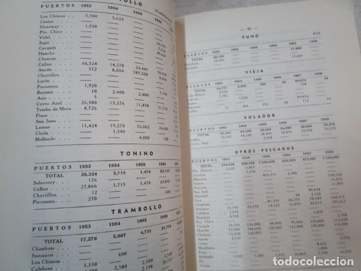 Libros de segunda mano: PERU 1959 PESCA - ESTADISTICA ECONOMICA DE LA INDUSTRIA PESQUERA - JAVIER IPARRAGUIRRE. + INFO - Foto 3 - 287953798