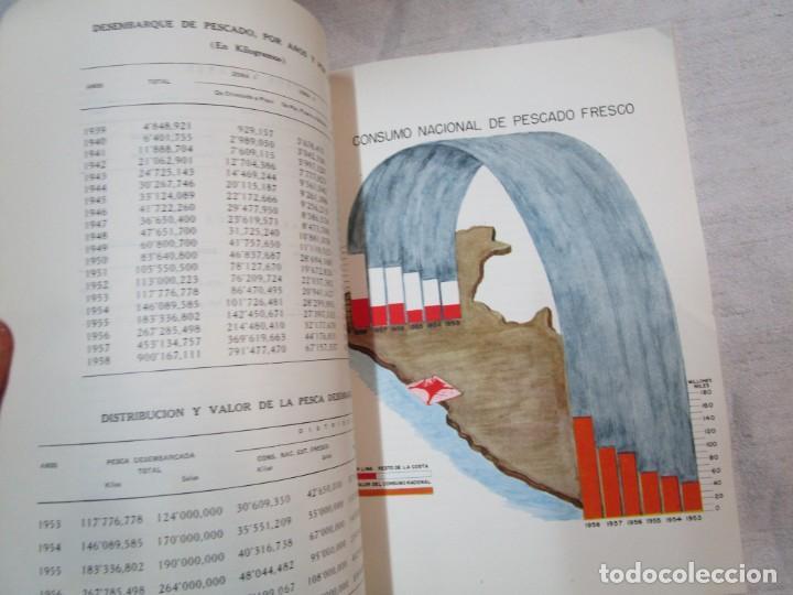 Libros de segunda mano: PERU 1959 PESCA - ESTADISTICA ECONOMICA DE LA INDUSTRIA PESQUERA - JAVIER IPARRAGUIRRE. + INFO - Foto 10 - 287953798