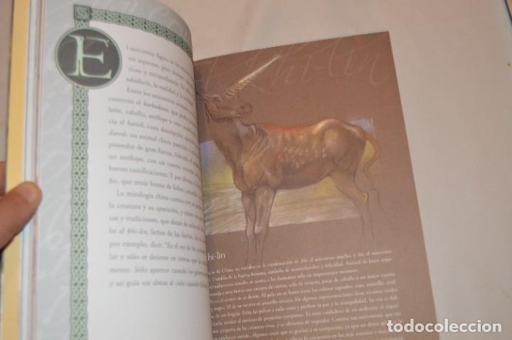Libros de segunda mano: EL MÁGICO MUNDO DE LOS UNICORNIOS - CRISTINA CAMBARERI / ALEJANDRO RAVASSI - ED. CONTINENTE - Foto 2 - 288584068
