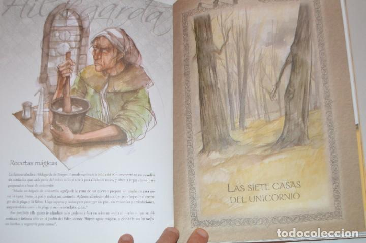 Libros de segunda mano: EL MÁGICO MUNDO DE LOS UNICORNIOS - CRISTINA CAMBARERI / ALEJANDRO RAVASSI - ED. CONTINENTE - Foto 4 - 288584068