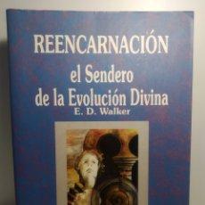 Libros de segunda mano: REENCARNACIÓN.EL SENDERO DE LA EVOLUCIÓN DIVINA. E. D. WALKER. ABRAXAS. Lote 288744858