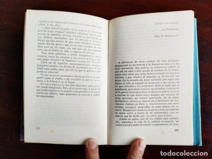 Libros: EROTICÓN. Antología de relatos galantes y amorosos 12 capitulos que desvelan misterios de la erotica - Foto 7 - 288973253