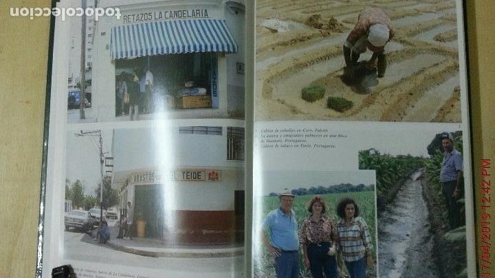 Libros: LOS CANARIOS EN VENEZUELA - CARMEN ASCANIO SÁNCHEZ - CENTRO DE LA CULT.POPULAR CANARIA- AÑO 2002 - Foto 6 - 144546862