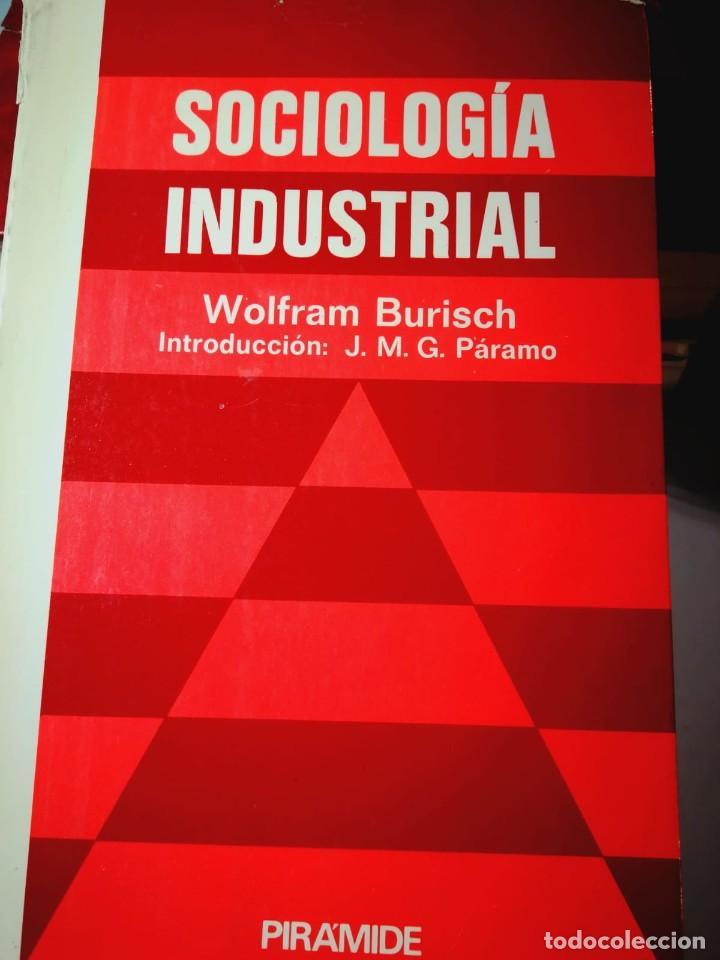 SOCIOLOGÍA INDUSTRIAL. WOLFRAM BURISCH (Libros Nuevos - Humanidades - Sociología)
