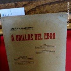 Libros: JORGE ROQUES Y TEODORO IRIARTE.A ORILLAS DEL EBRO.PR. DE ALBERTO CASAÑAL SHAKERY Y EPILOGO DE C. M.. Lote 245590745