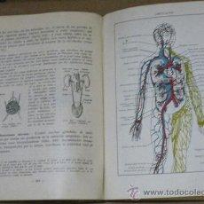 Libros de segunda mano: ANTIGUO LIBRO DE TEXTO HISTORIA NATURAL - CIENCIAS COSMOLOGICAS, 6º CURSO - EDITORIAL LUIS VIVES. ZA. Lote 25452674